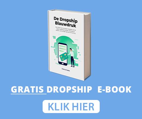 gratis dropshipping ebook